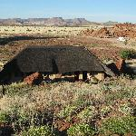 Accommodation at Twyfelfontein