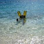 Playin in the crystal clear water!