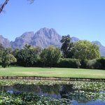Hottentot Mountian range from Franschhoek