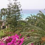 vue de chambre sur mer et jardin