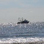 Shrimping boats off the coast of Georgia's Jekyll Island