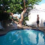 Pool at Star Villa