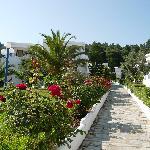 Gardens to Accomodations