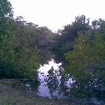 Billy's Creek Where You Canoe