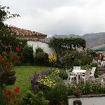 Garden at Pension Alemana