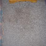 Carpet stains all over