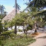 Pousada Entre as Águas - Cabanas zwischen Palmen