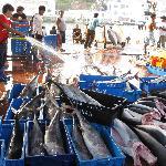 Local fishmarket