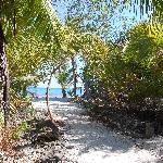 Pathway to one of the cabanas