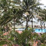 Bahia grounds