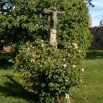 crucifix and roses