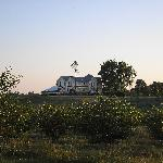View of the inn from the surrounding cherry orchards