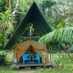Photo de Corcovado Adventures Tent Camp
