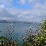 View of the harbour from Bradley's Head