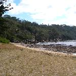 A secluded beach at Bradley's Head