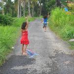 Flying the kites in Ubud