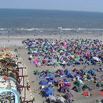Beach Jam tents- Near the ocean
