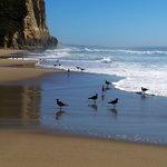 """Reflections"" - Pomponio Beach"