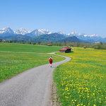 Springtime in Schwangau