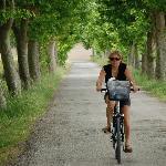 Easy cycling Canal Du Midi