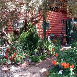 Enchanting Dream Maker Garden
