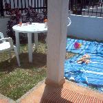 our back garden#230