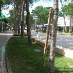 Main avenue in Milano Marittima