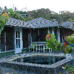 Cottage 6, plunge pool and patio