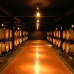 oak cellar