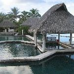 Dolphin Center next to our overwater bungalow