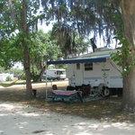 Campsite  #234