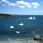 Newfoundland icecubes