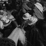 Fiesta de los Mules