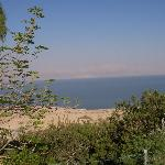 View from the pool; Dead Sea and Jordan mountains