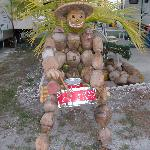 Coconut Drummer Man