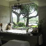 Spa room view