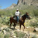 Patty Cakes the Cowboy!  Riding in Tucson.