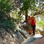 Some much-needed shade on the trail in Catalina State Park!