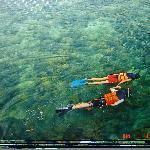 Snorkelling couple!