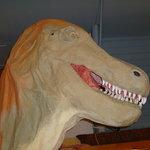 Scarey T-Rex!!!
