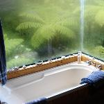 Dropped rainforest bath (honeymoon suite)