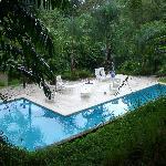 Funky Swimming Pool