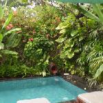 Bali Pavilions