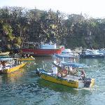 Water taxis - Puerto Ayora