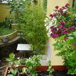 beehive courtyard