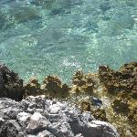 Crystal clear sea