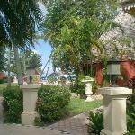 jardin, hotel