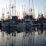 marina at dusk