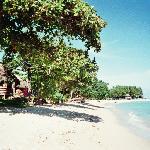 Beach, Reginas
