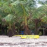Bill's beach
